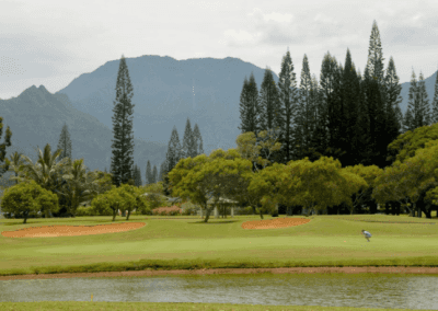 Makai Golf Course Waterfall View