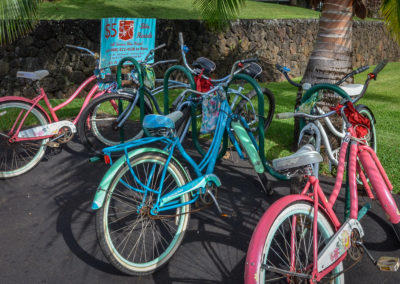 Bikes Available for Rent